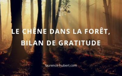 Le chêne dans la forêt – Bilan de gratitude